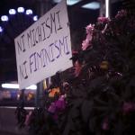 cartel feminista ni michismi ni feminismi