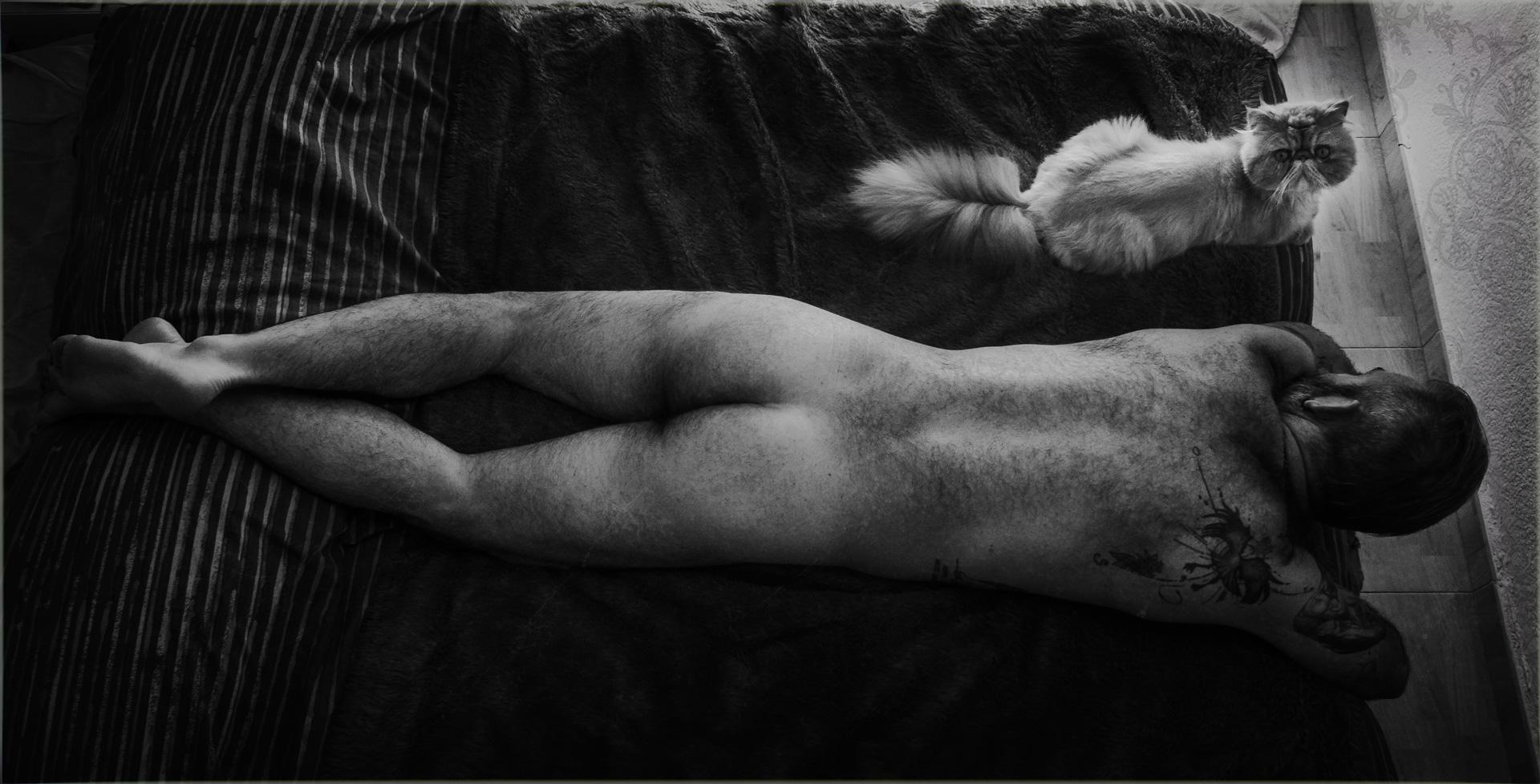 hombre tumbado en la cama desnudo junto a gato persa