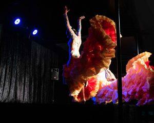 flamenca bata cola amarillo