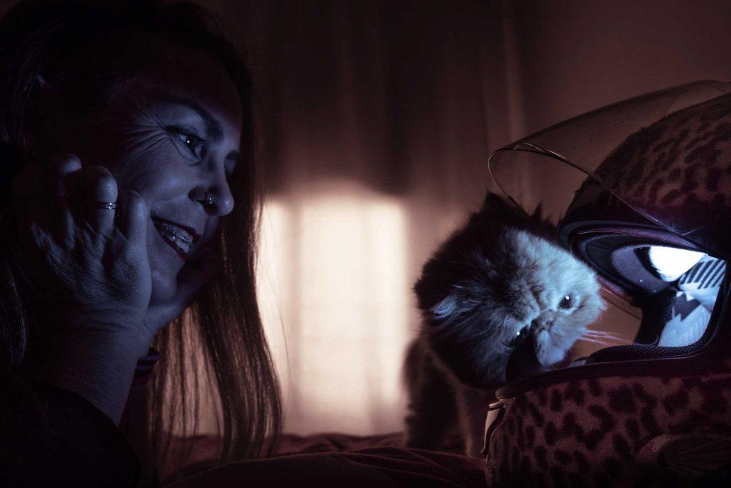 gato persa con casco y chica sonriendo
